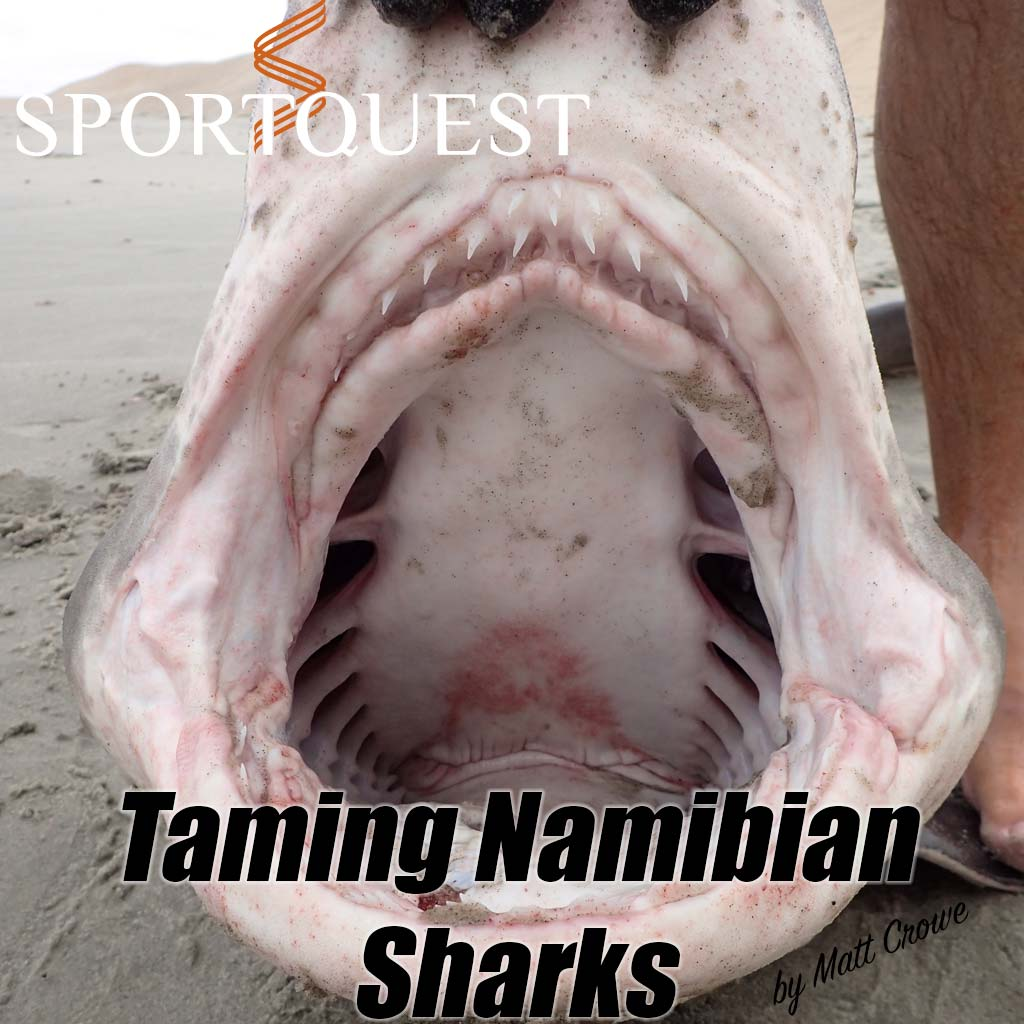 HookPoint fishing magazine Matt Crowe Sports Quest Namibia Sharks Mouth Bronze Whaler