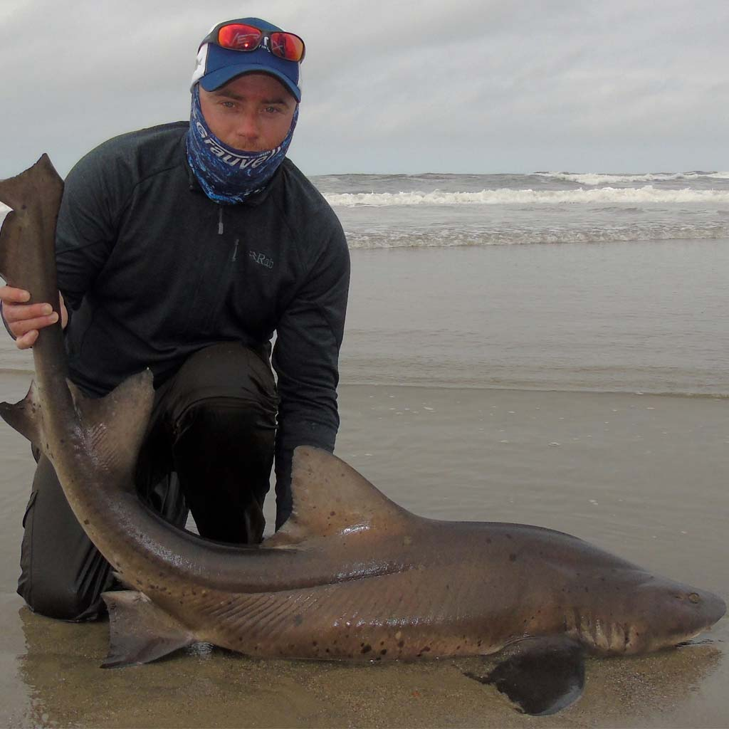 HookPoint fishing magazine Matt Crowe Sports Quest Namibia spotted gulley shark nurse hound