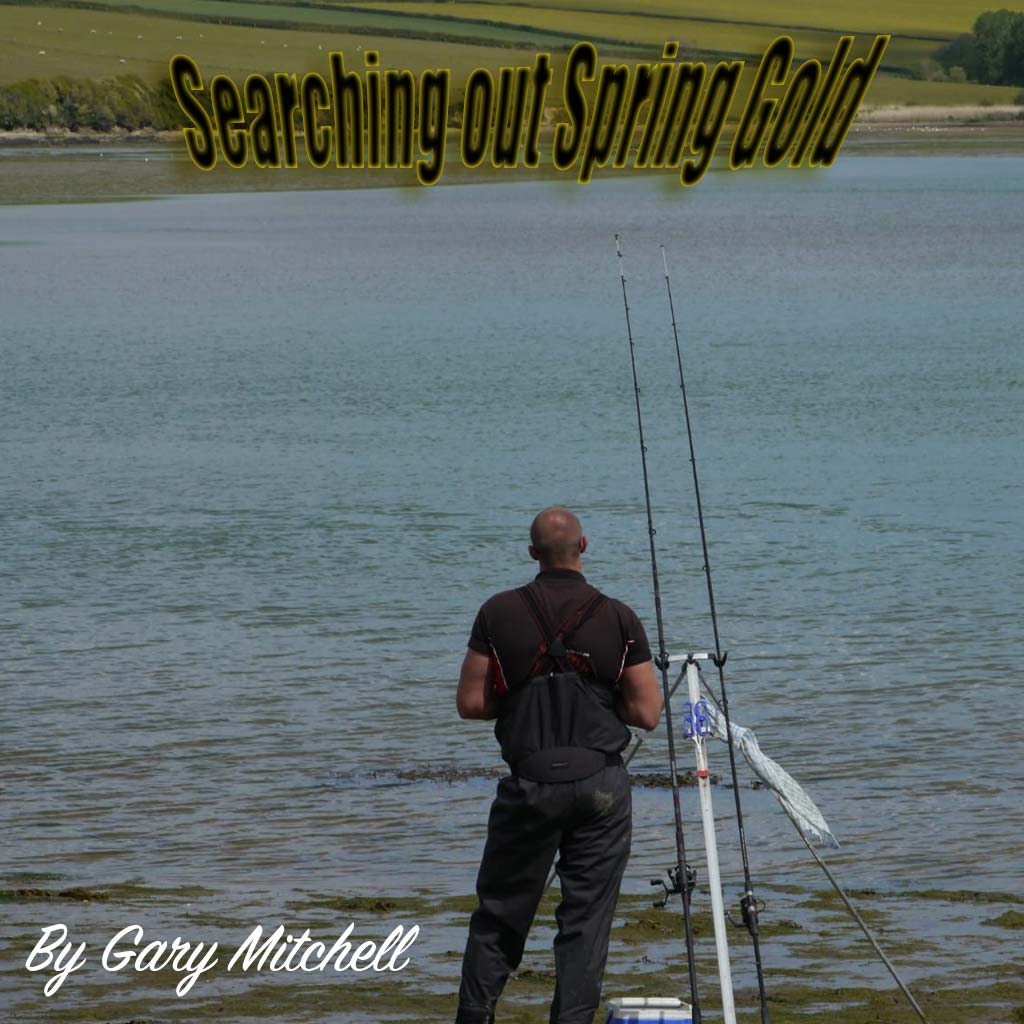 HookPoint Fishing Magazine Carl Mccormack Gary Mitchell gilts gilthead bream devon