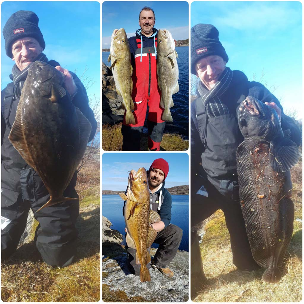 HookPoint Fishing Magazine Skarnsundet Steve Harder Phill Dale Halibut Cod Wolf Fish