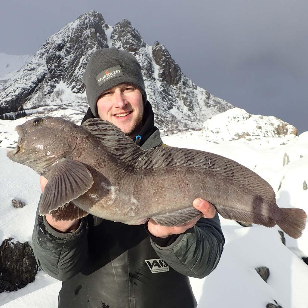 HookPoint Fishing Magazine Lofoten Islands Norway Sportsquest Ross Johnson Matt Crowe Wolf fish