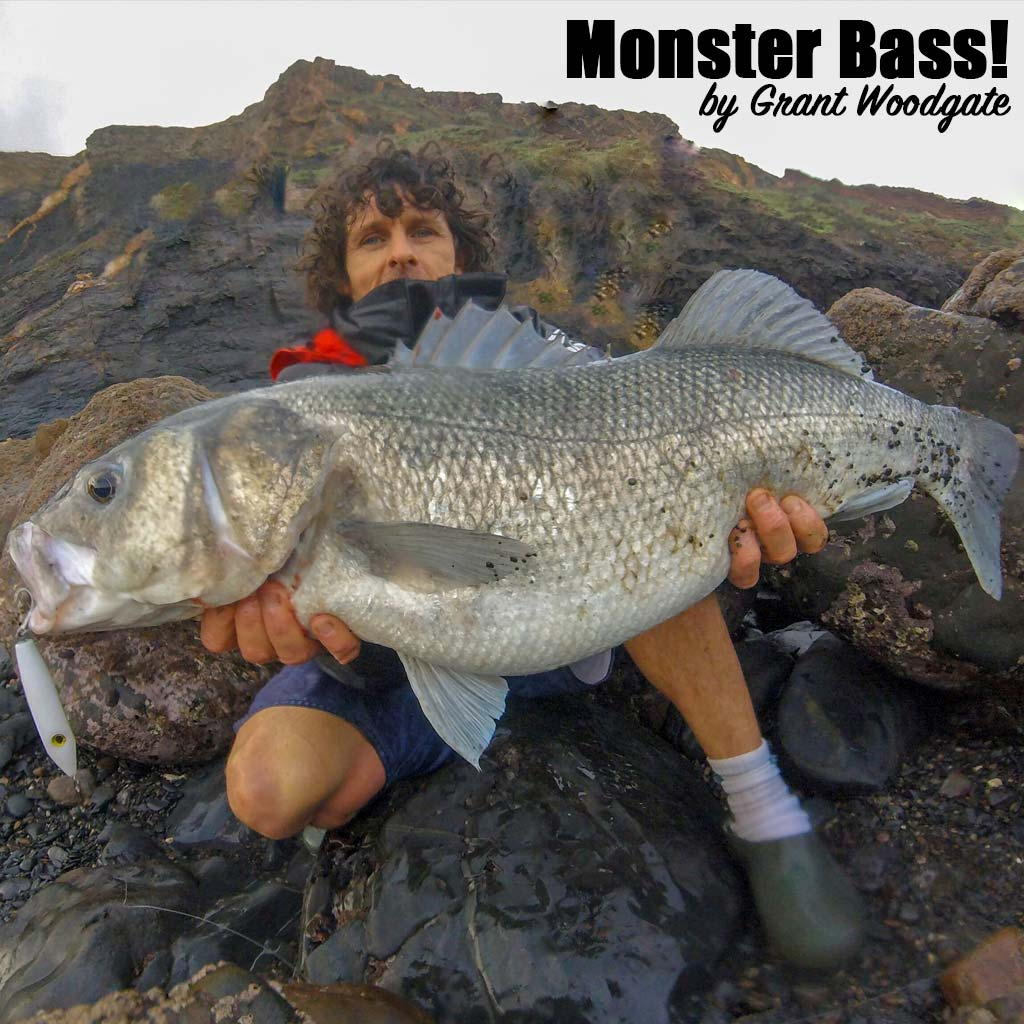 Monster Bass by Grant Woodgate cover