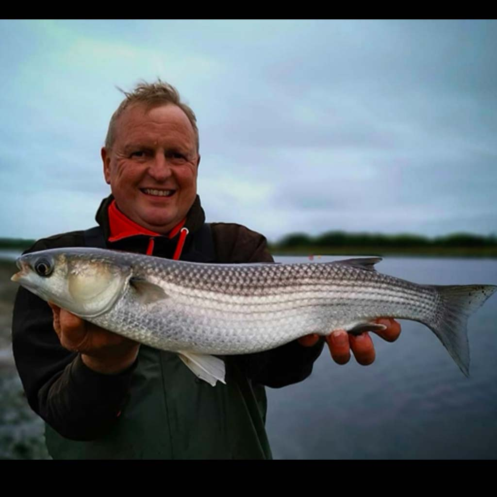 A fine specimen mullet from christchurch area