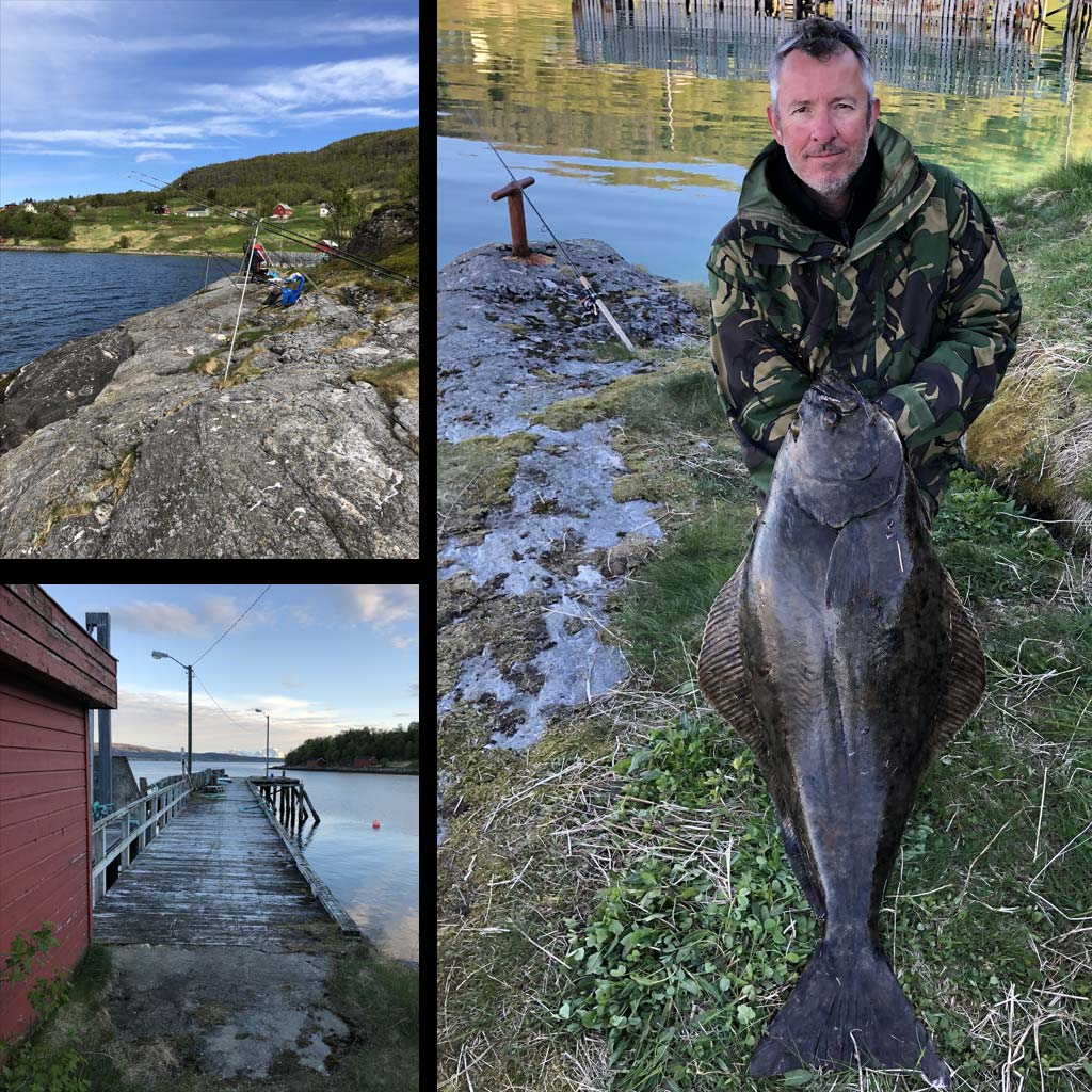 a shore caught halibut in norway kveite