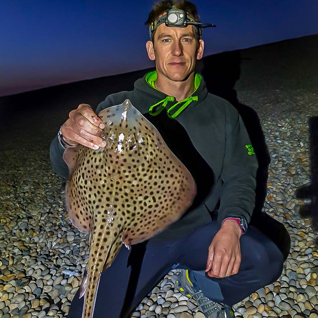 Spotted Ray Chesil caught by Rob Johansen