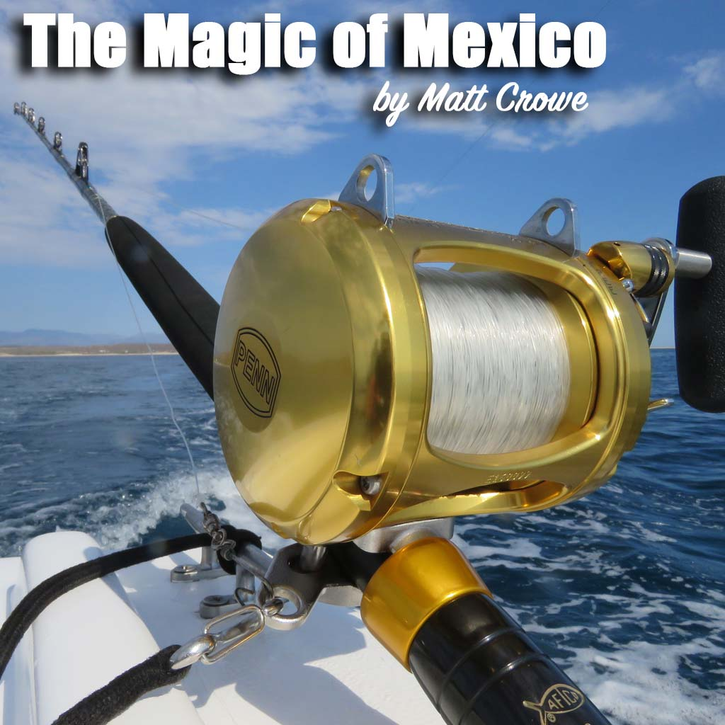 Magic of Mexico cover