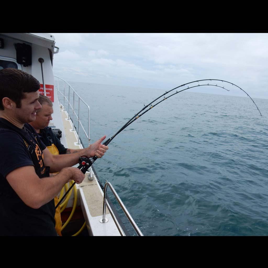 SHETLAND Fighting fish rods bent
