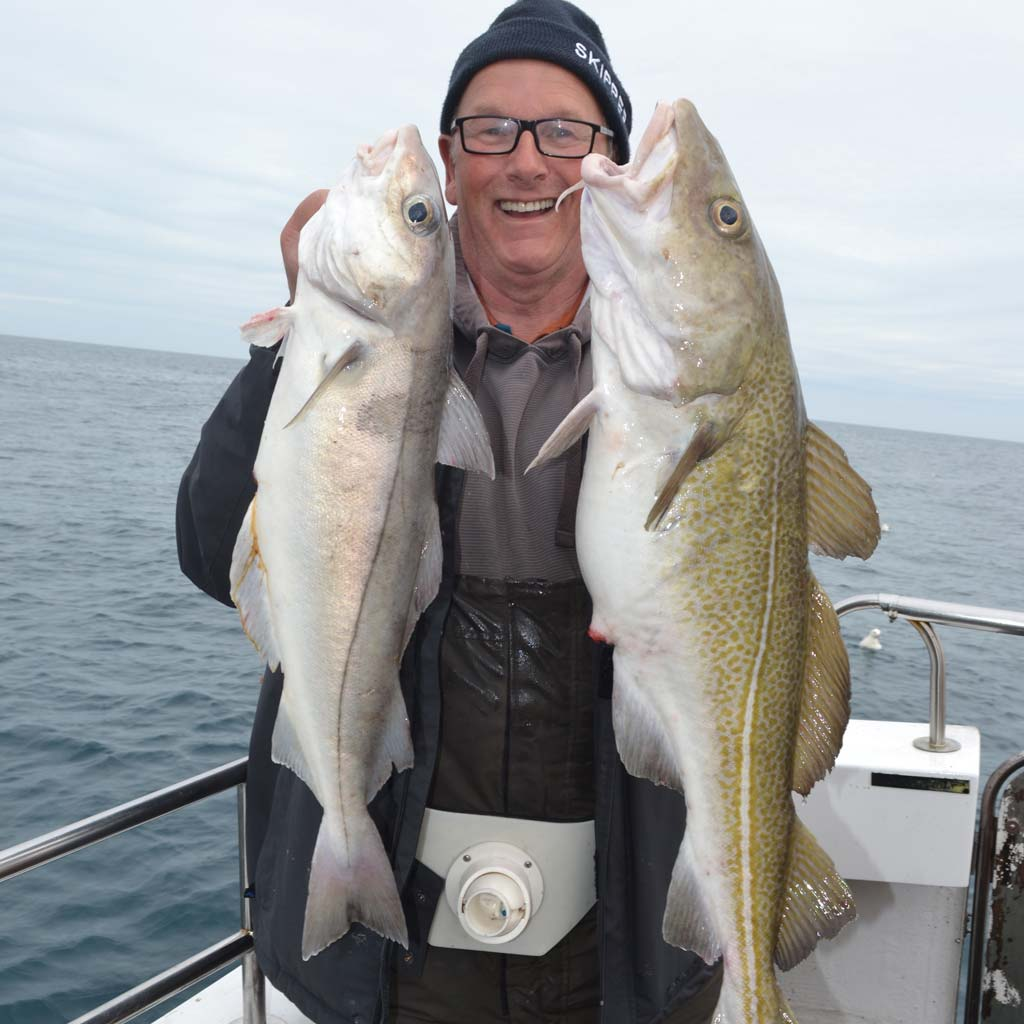 Shetland Haddock and Cod