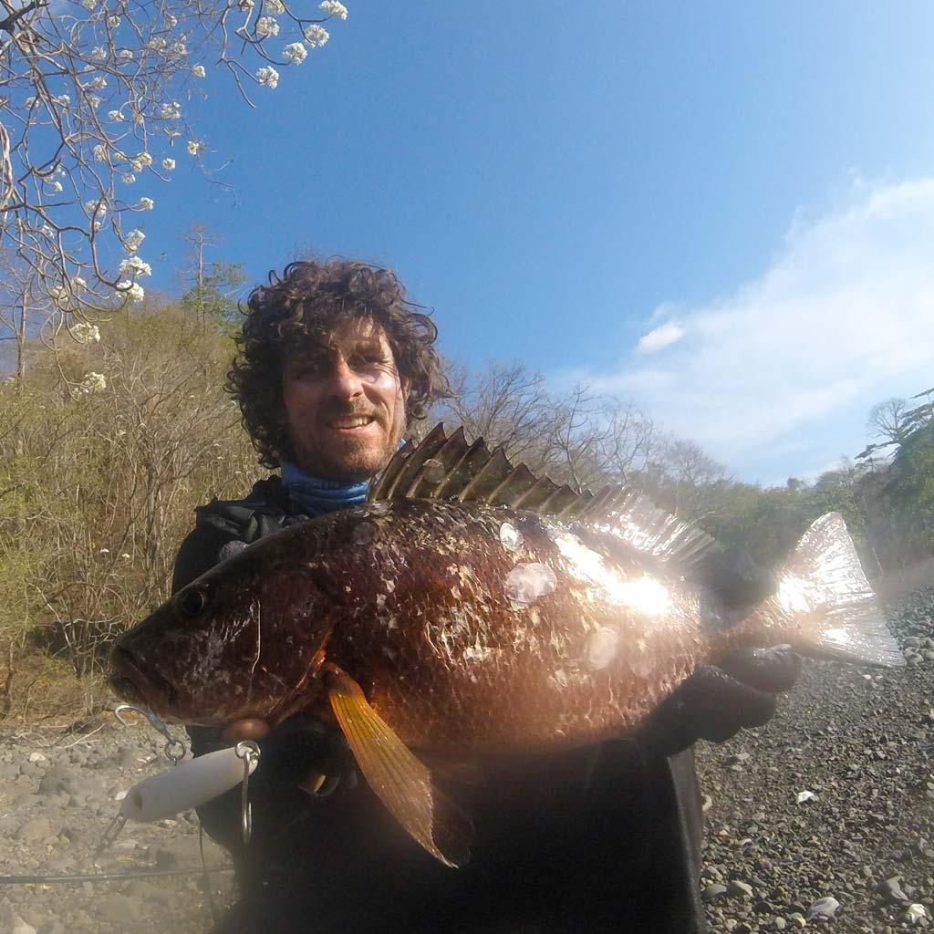 Cubera Snapper grant woodgate samson lures panama hookpoint fishing