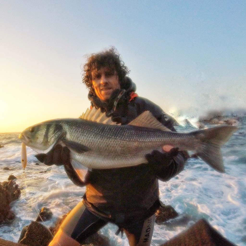 portugese bass for grant woodgate