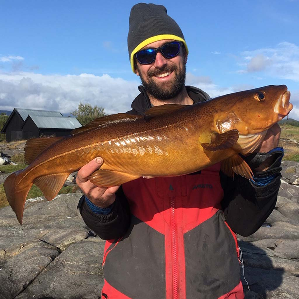 a lovely kelp cod from norway for rob stammas