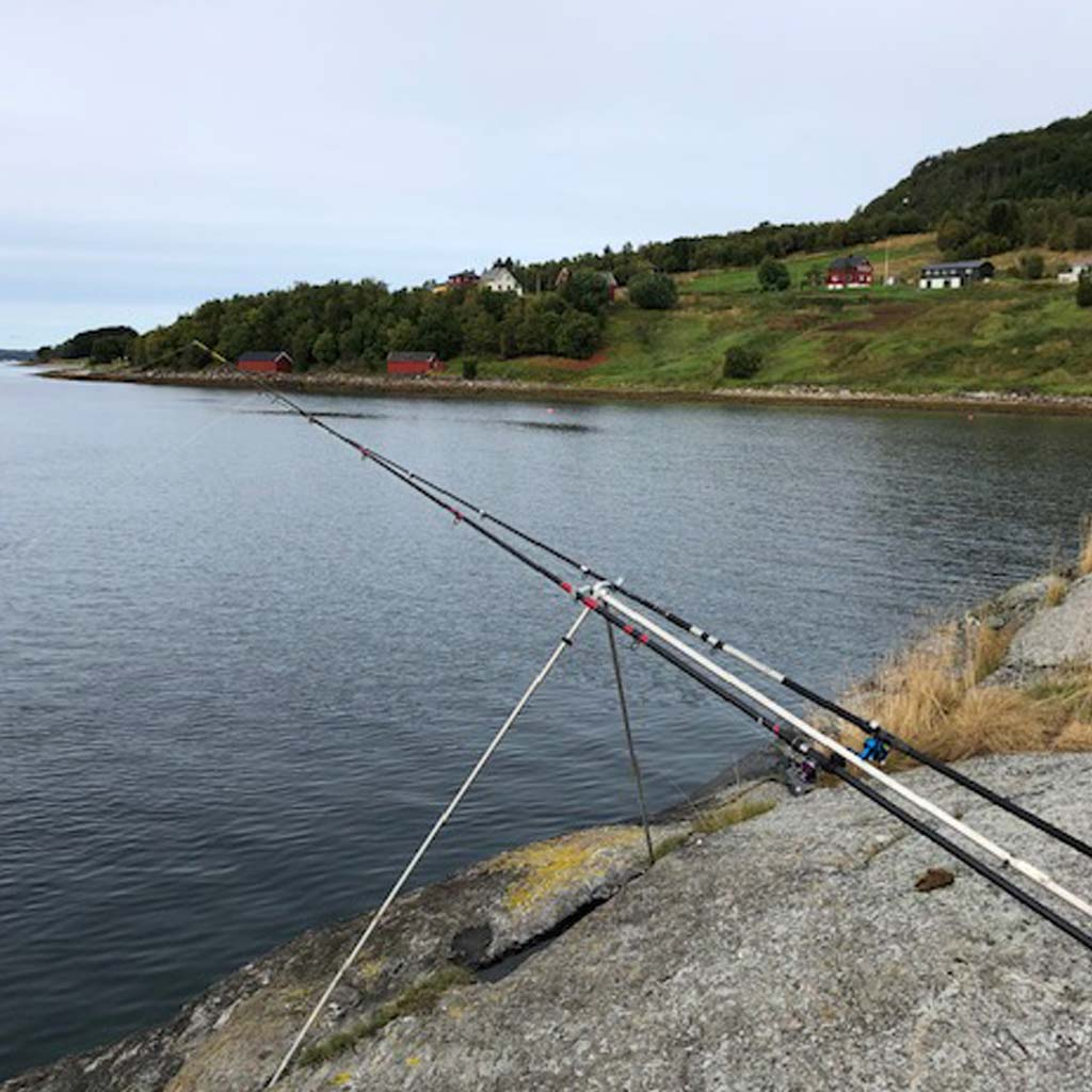 the beautiful fjords of norway being fished from the shore