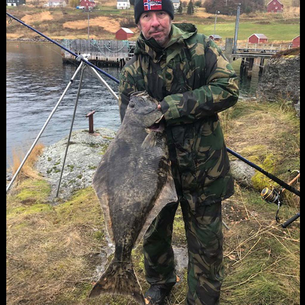 a nice sized halibut from norway rolla