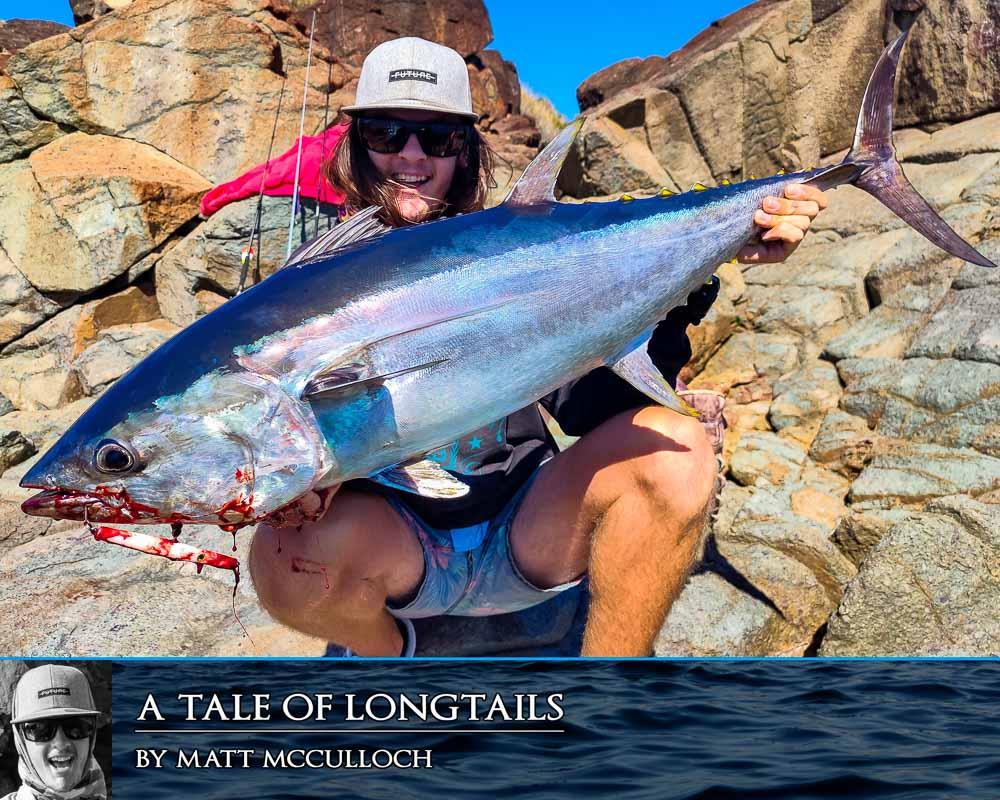 a tale of longtails cover with matt mcculloch