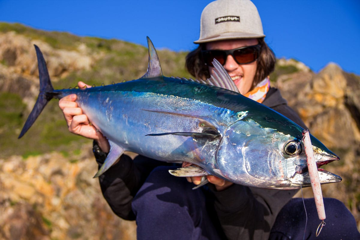 Matt Mcculloch with a long tail tuna on a samson candle pelagic lure