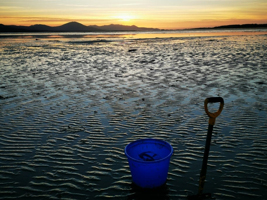 An Irish beach with bucket and fork ready to dig the emerging lug casts